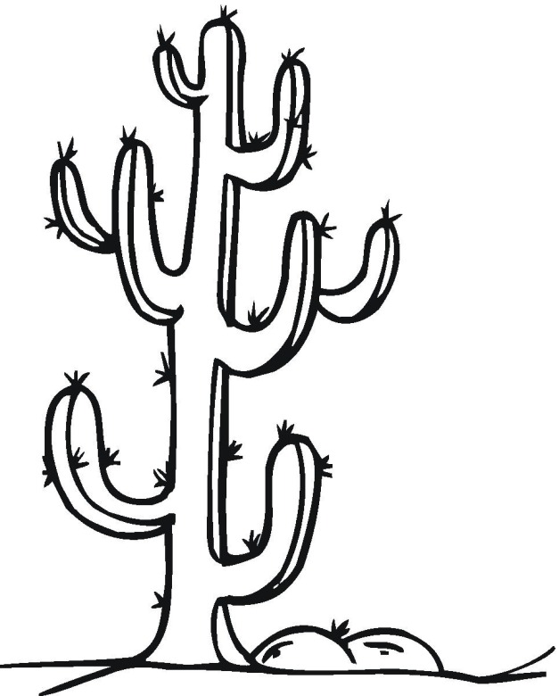 cactus coloring pages plants - photo#42