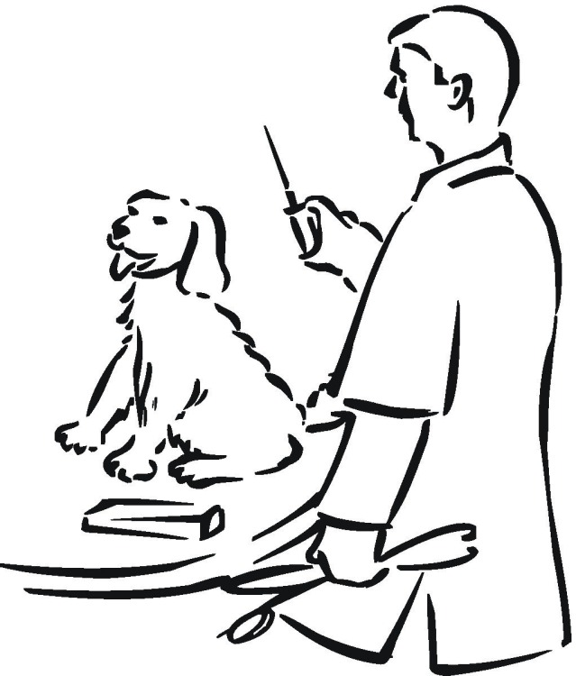 coloring pages veterinarian - photo#22